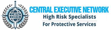 CEN (Central Executive Network)